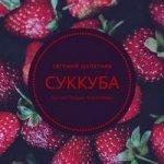 Евгений Щепетнов - Суккуба (2020) MP3